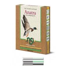 NSI-ANATRA